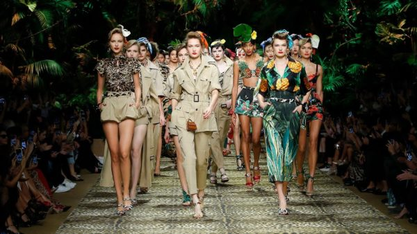The new Dolce and Gabbana clothing collection is inspired by wild nature